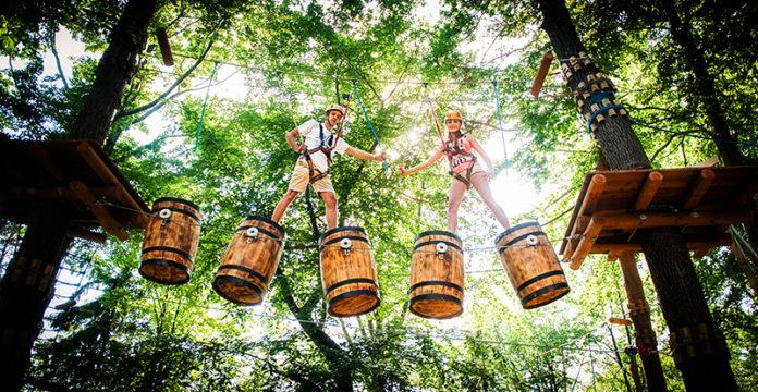 Parki linowe dla dzieci – wycieczka do ZOO z odrobiną adrenaliny