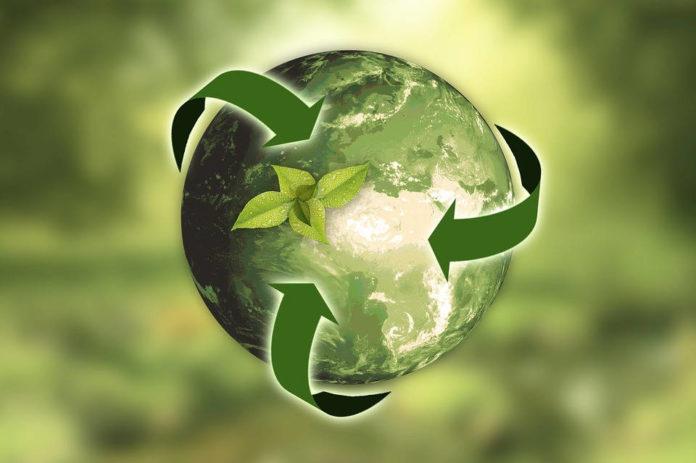 Proste zasady domowego recyklingu